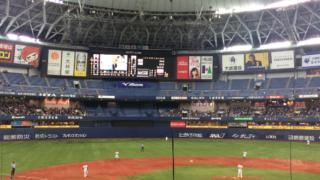 婚活 大阪 野球